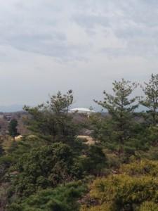 荒幡富士西武ドーム